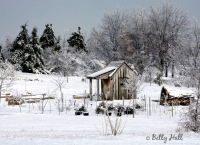Childrens Garden in winter