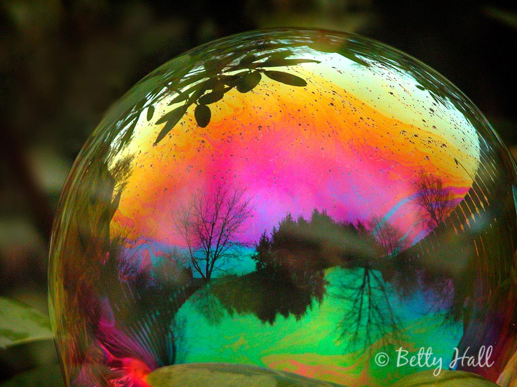 Bubbles - Betty Hall Photography