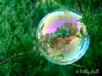 Bubble landscape
