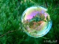 Bubble landscape