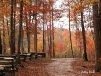 autumn-in-kentucky