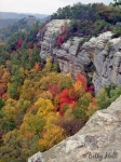 red-river-gorge-auxier-ridge