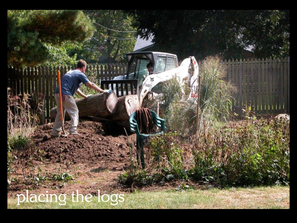 our-backyard-story-12