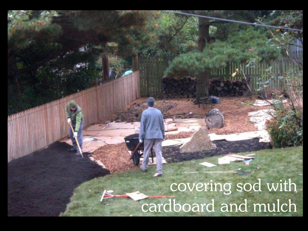 our-backyard-story-23