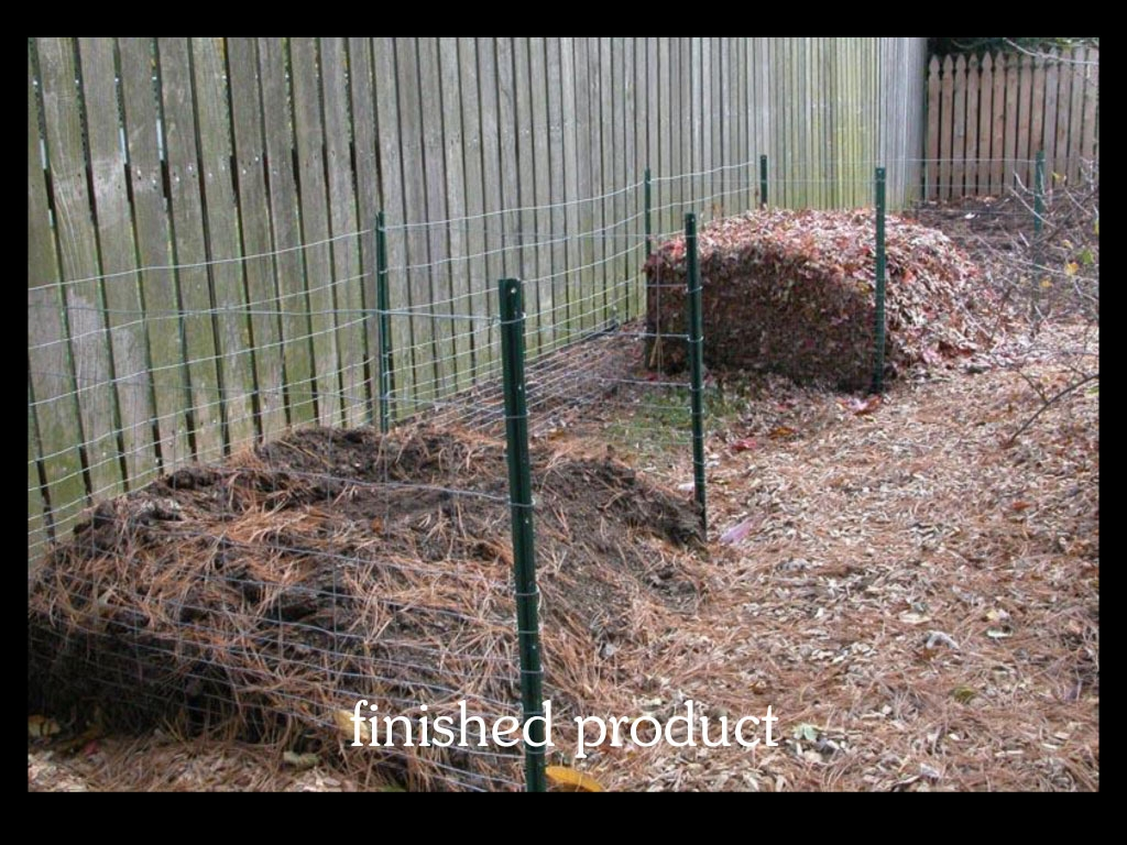 our-backyard-story-27