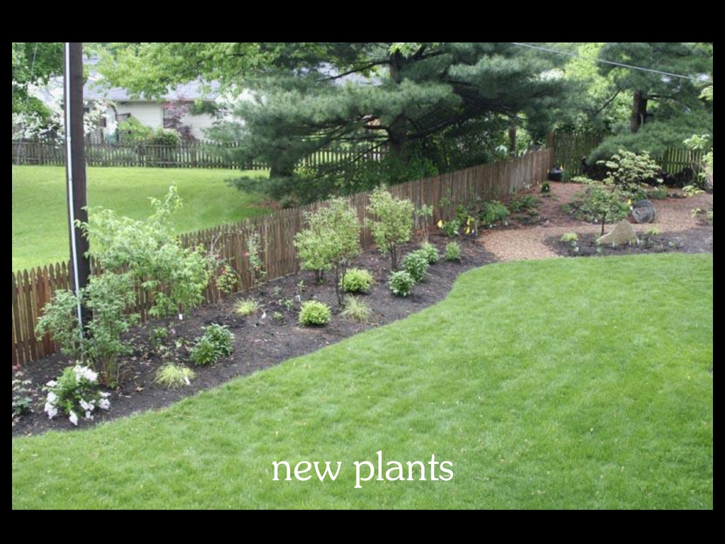 our-backyard-story-36