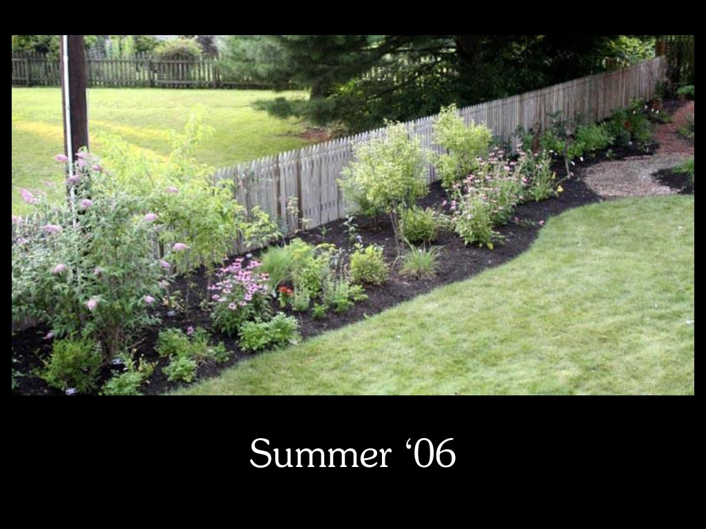 our-backyard-story-42