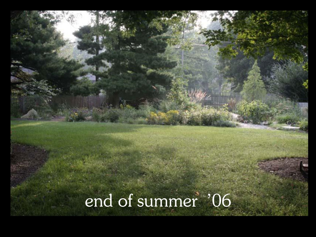 our-backyard-story-55