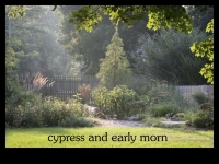our-backyard-story-57