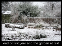 our-backyard-story-67