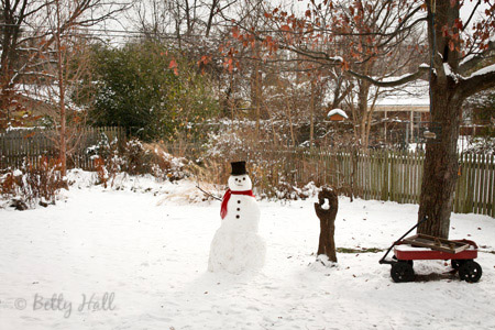 Kentucky backyard snowman
