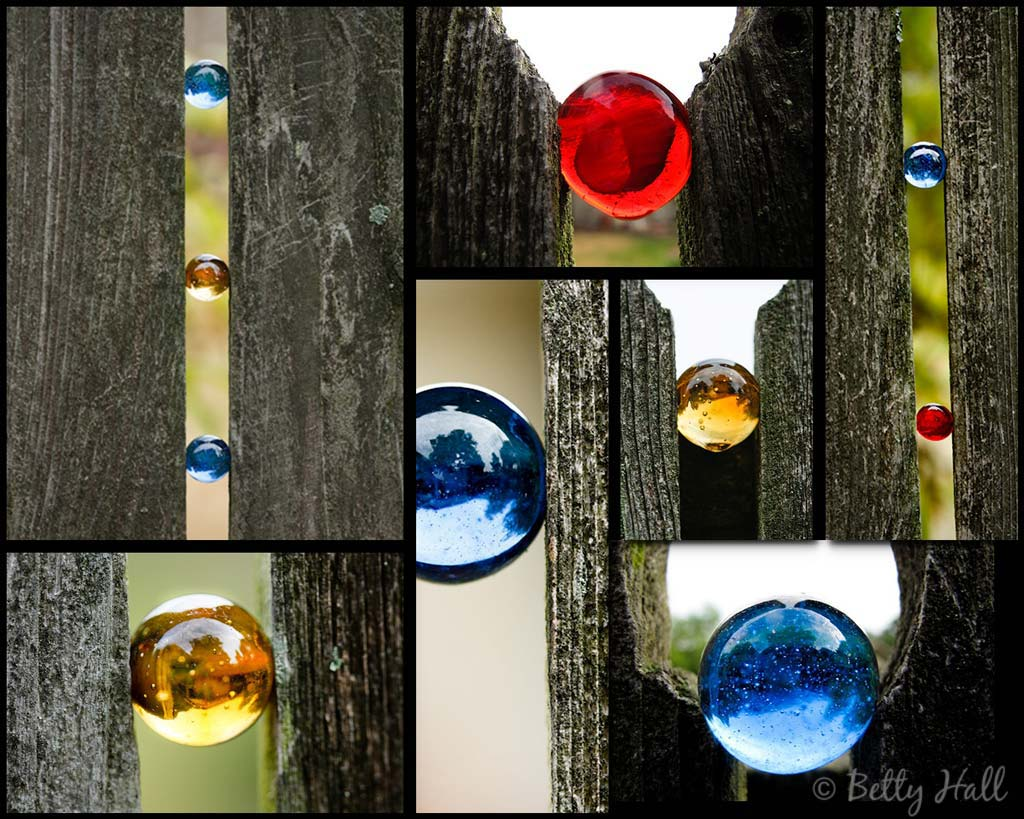 colored marbles between fence pickets add color to our backyard
