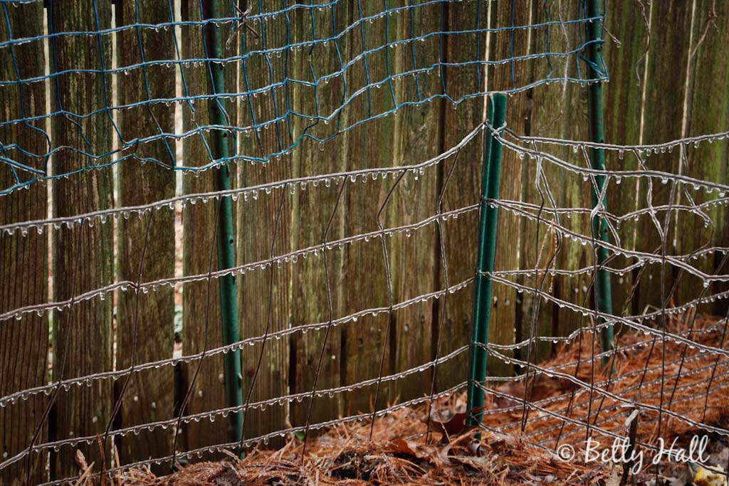 beads of ice on wire fence