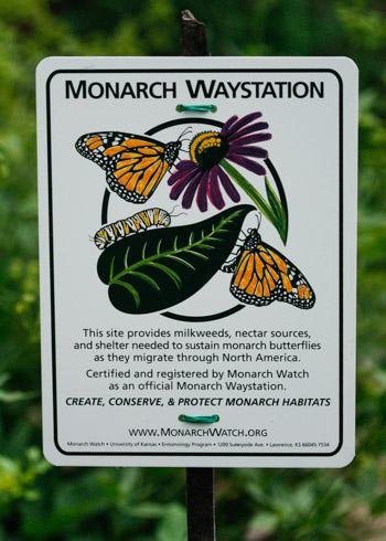 Monarch Waystation sign