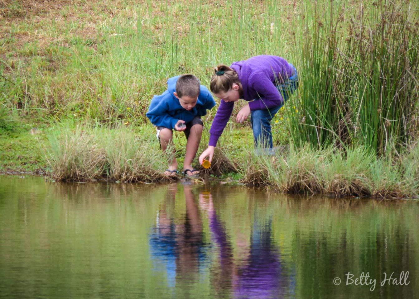 Children exploring a pond