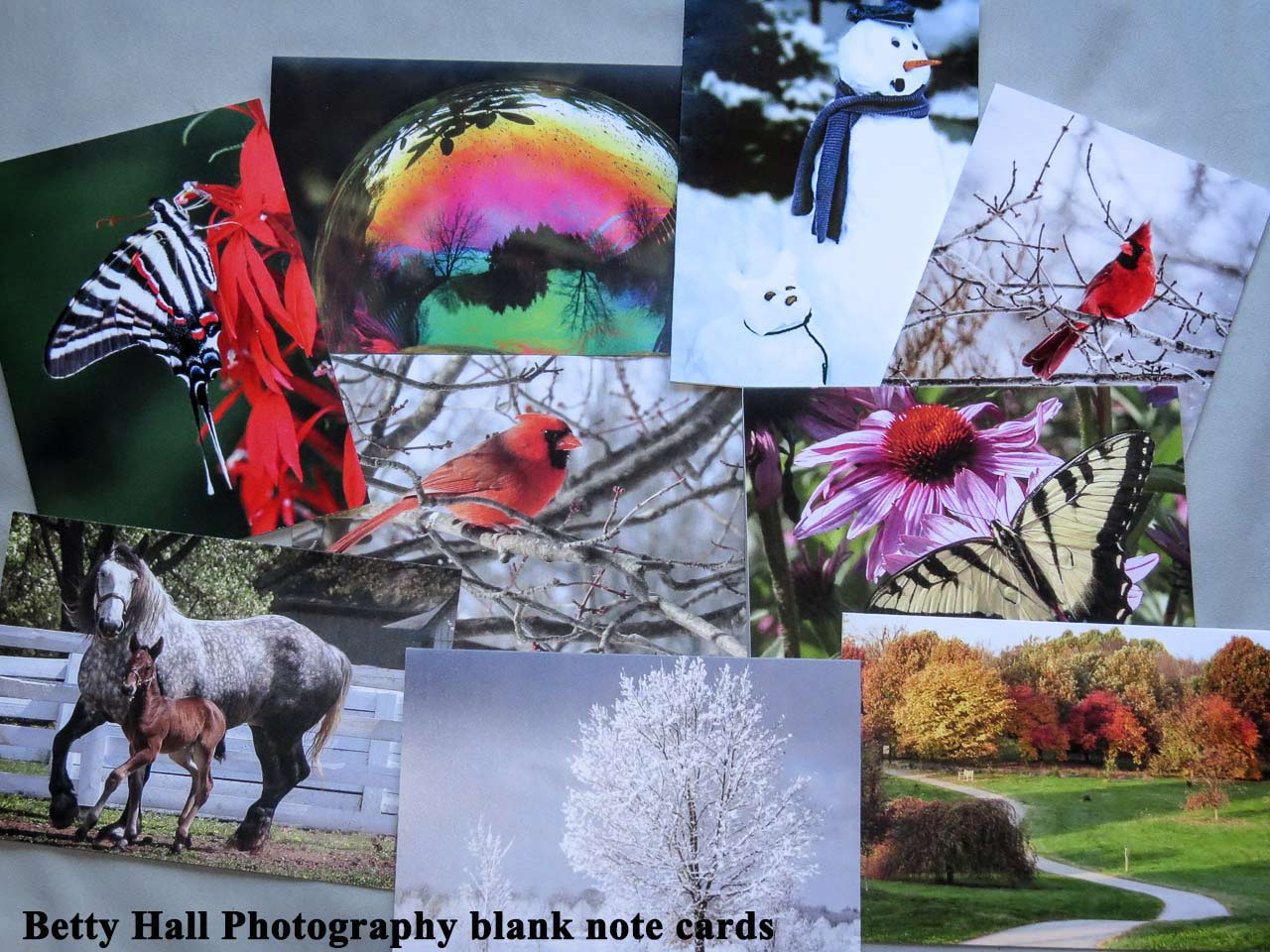 Betty Hall Photography note cards cards