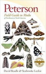 Book cover of Peterson Field Guide to Moths